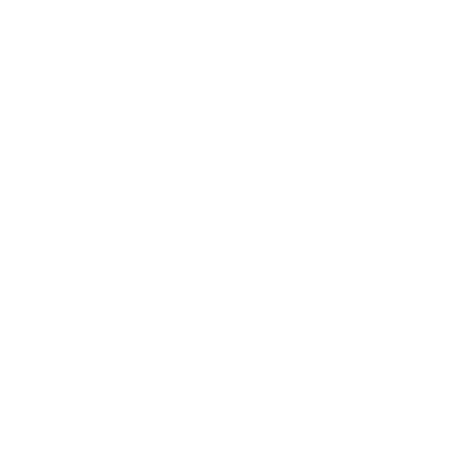 logo BGL online teaching experts